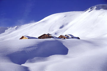 Schnee-Alp-Traum (Foto: Ines Koch)