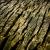 Serie: Holz (Foto: Peter Zastrow)