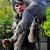 Serie: Der Falkner hat einen Vogel (Foto: Karl-Heinz Richter)