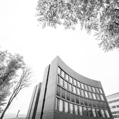 Institutiv (Foto: Uli Pfeufer)