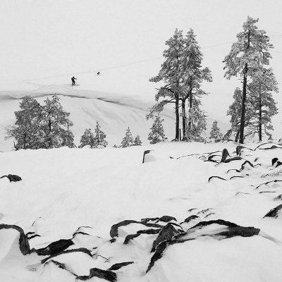 Im Schnee (Foto: Manuela Hahnebach)