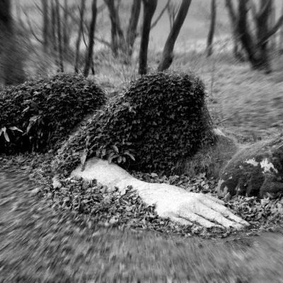 Lost Gardens (Foto: Peter Maximilian Schmidt)