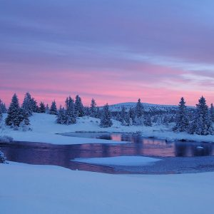 Abend bei Sjusjøen (Foto: Manuela Hahnebach)