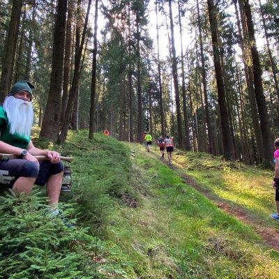 Im Suhler Stadtwald . Südthüringentrail 2020 (Foto: Manuela Hahnebach)