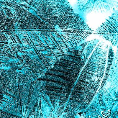 Eisseifenblasenausschnitt (Foto: Kerstin Wolff)